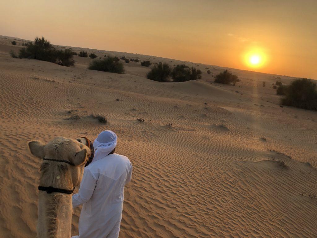 sunset desert safari dubai
