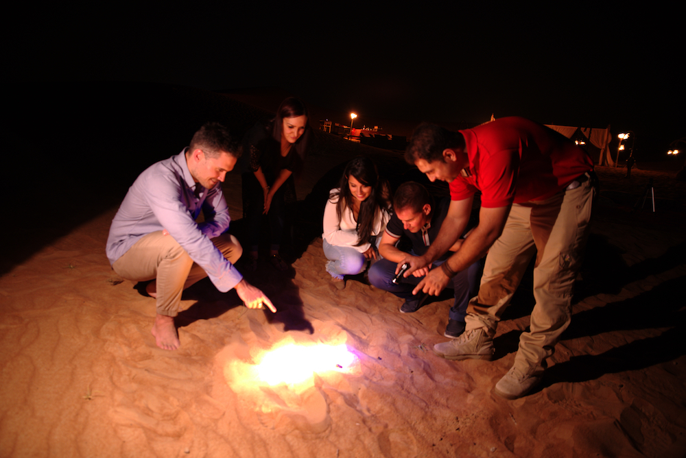 Night desert safari in Dubai, UAE